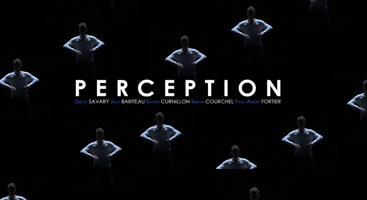 Affiche du Film Perception